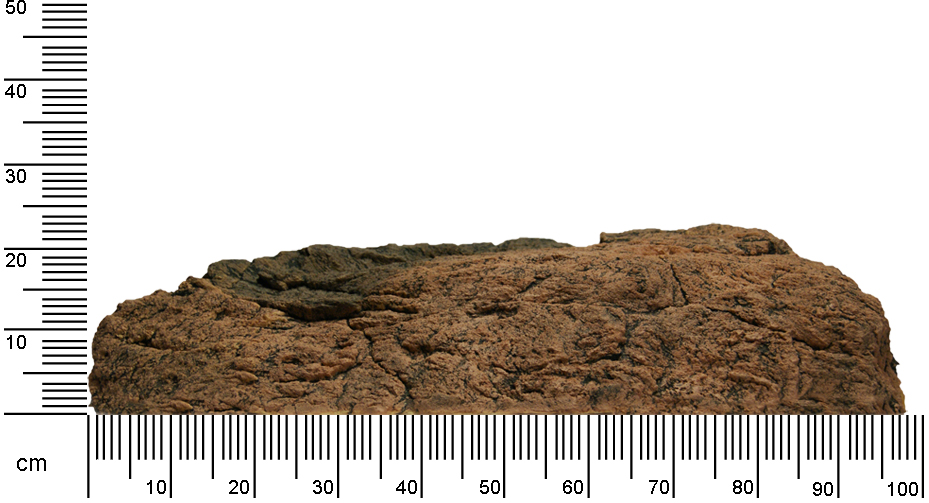 Rock T Depth