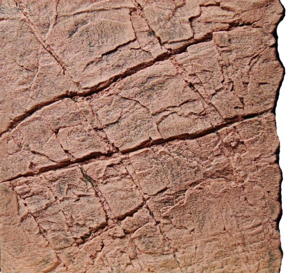 Slimline Red Gneiss Aquarium backgrounds B50 - 50 x 50 cm