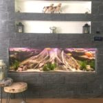 Amazonas XL 3D root aquarium background by ARSTONE photo review