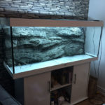 Alimar 3D aquarium background by ARSTONE photo review